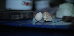 Egg and Stone